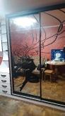 Шафа-купе ДСП: Німфеа Альба + покраска малюнку