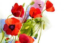 lv_12_flowers.jpg