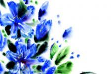lv_13_flowers.jpg