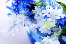 lv_19_flowers.jpg